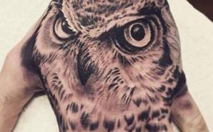 Balck&Grey Owl
